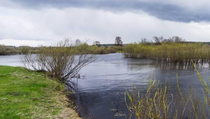 Брянцев пригласили на байдарочный сплав по реке Ветьма