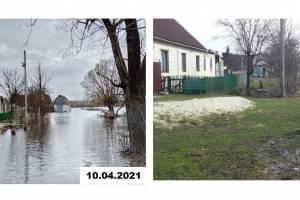 В Брянске затопленные дачные участки начали освобождаться от воды