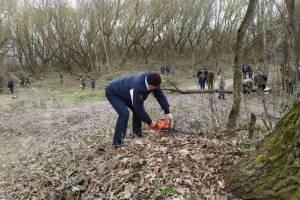 В брянском селе Меловое начали благоустраивать чудотворный источник