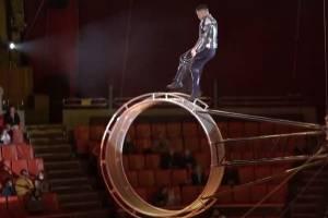 В Брянском цирке прошла премьера программы «Звездный круиз»