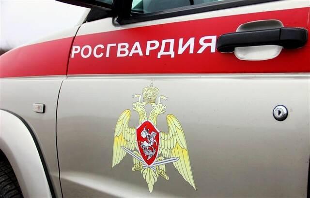 В Брянске бойцы Росгвардии задержали двух магазинных воров