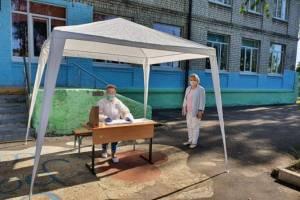 На Брянщине оказалась рекордной явка на голосование по поправкам в Конституцию