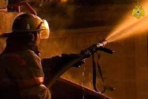 В утреннем пожаре под Новозыбковом пострадал человек