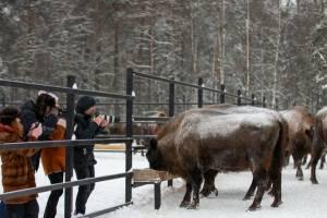 В «Брянском лесу» прошла экскурсия для фотографов