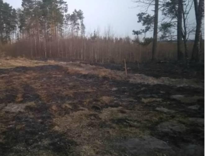 В Трубчевском районе тушили лесной пожар на площади 1 га
