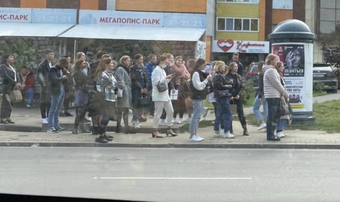 Огромные очереди выстроились в Брянске к «скотовозкам»