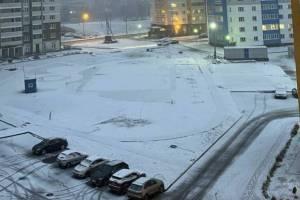 Брянцам в последнюю субботу января пообещали небольшой снег