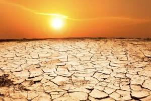 На Брянщине из-за адской жары МЧС объявило экстренное предупреждение