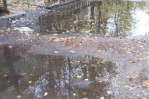 В Брянске дорога на улице Бузинова стала «полосой препятствий»