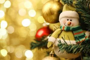 В Брянской 31 декабря области объявили выходным днем