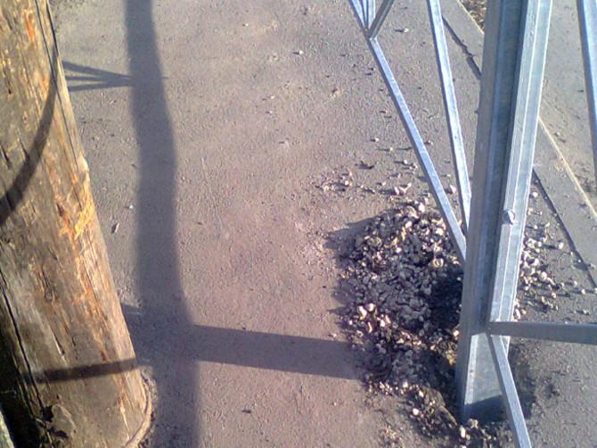 В Брянске новый забор перекрыл тротуар для папы с коляской
