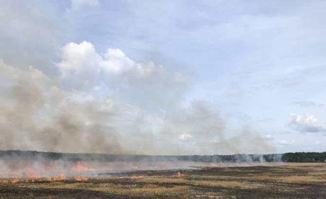 На Брянщине сгорело 9 гектаров пшеницы и сельхозтехника