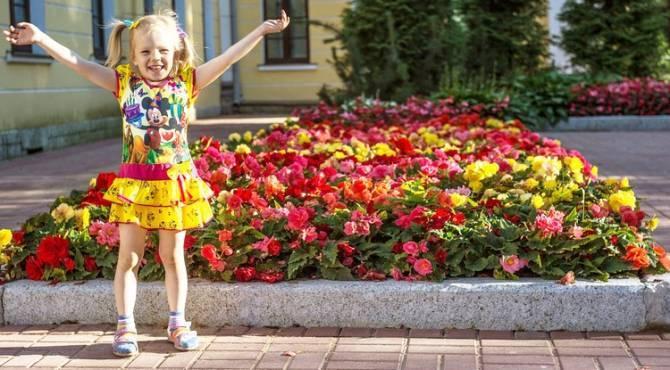 Брянских социальных работников поздравили с профессиональным праздником