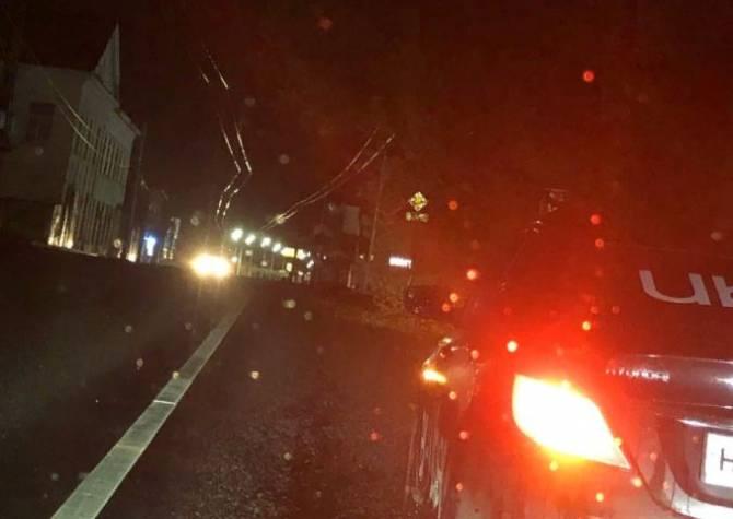 В Брянске на улице Калинина на дорогу рухнуло дерево