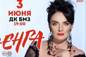 Брянцев пригласили на концерт Елены Ваенги