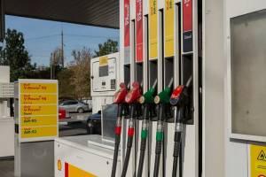 В Брянской области начал дорожать бензин