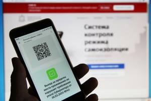 В Брянской области планируют ввести электронные пропуска