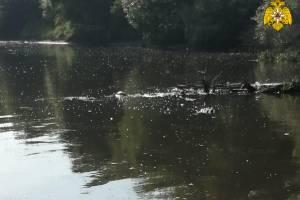 Под Брянском в Десне утонул 36-летний мужчина
