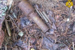 В поле возле Сещи нашли гранату времён войны