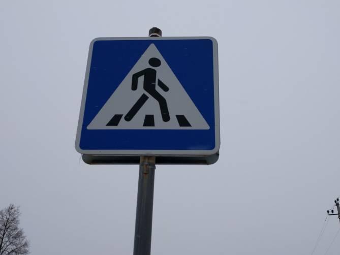 В Брянске наказали 35 бессмертных пешеходов
