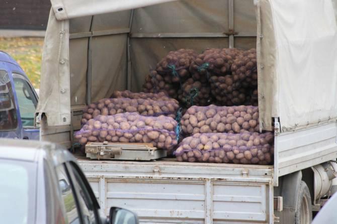 На Брянщине в июне стремительно подорожали картофель и фрукты