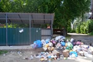В Брянске жители улицы Спартаковской устроили свалку рядом с контейнерной площадкой