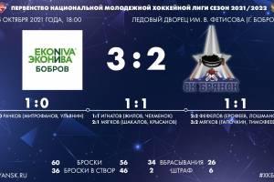 Брянские хоккеисты проиграли «ЭкоНиве-Бобров»