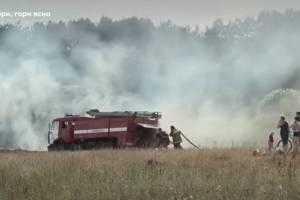 На Брянщине участились случаи сжигания травы на полях