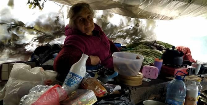 В Брянске под мостом у новой дороги в шалаше поселилась семья