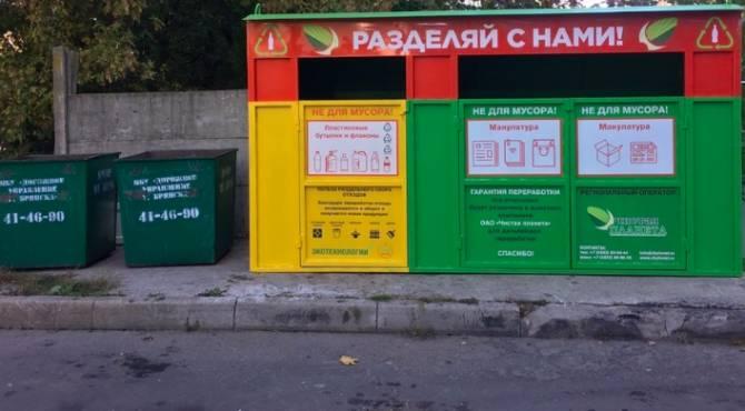 Брянцам пообещали 15 тысяч рублей за видео перемешивания раздельного мусора