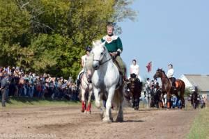 Локотской конный завод попал в список интересных мест для экотуризма