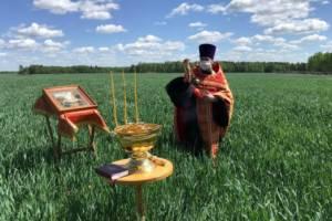 В Карачевском районе освятили сельхозтехнику