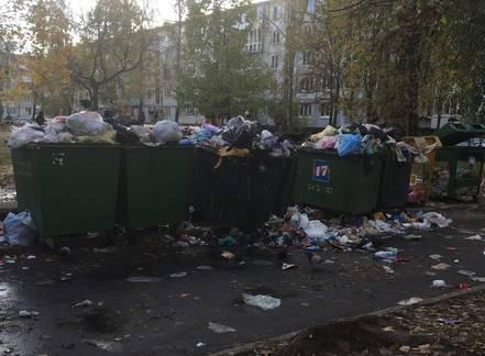 В Брянске на улице Орловской двор превратился в свалку