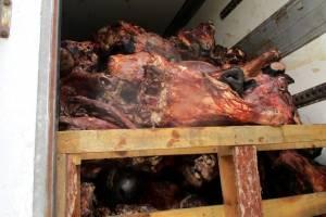 На Брянщину не пустили 32 тонны говядины из Беларуси