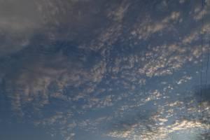 На Брянщине в понедельник похолодает до -4ºC