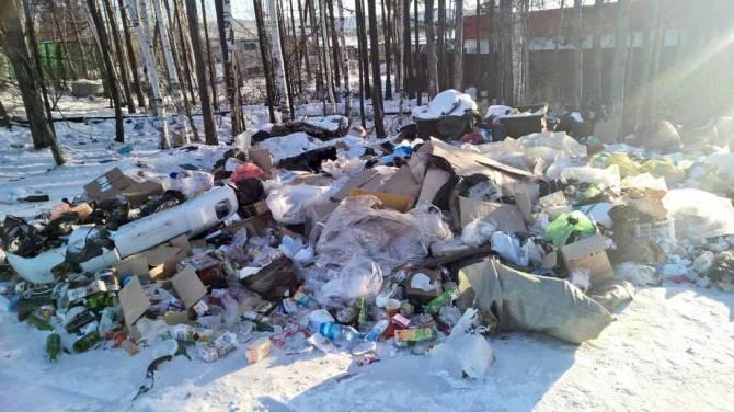 В суземской роще появилась незаконная свалка мусора
