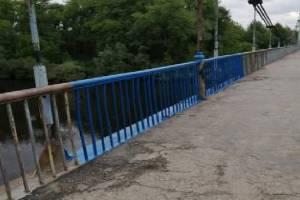В Брянске красящего Голубой мост активиста упрекнули в поспешности