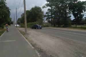 В Брянске от сильного ветра рухнуло дерево на Белорусской