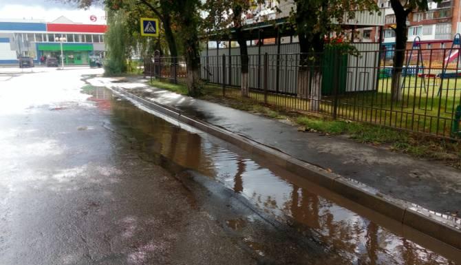 Брянцы требуют отремонтировать дорогу у детского сада «Деснянские звездочки»