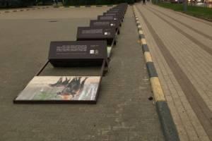 В Брянске ветер повалил «стада зубров» на Площади Партизан