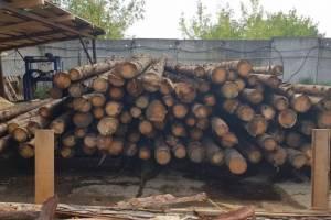 В Жирятинском районе нашли пожароопасные пилорамы