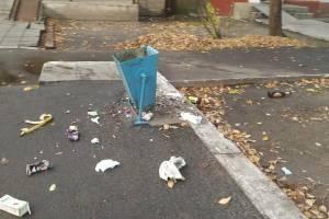 В Белых Берегах старушка перевернула урны и разбросала мусор