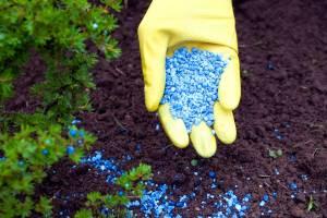 Брянское сельхозпредприятие оштрафовали за пестициды в почве