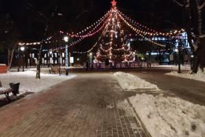 В Брянске новогодние ёлки не стали местами массовых гуляний