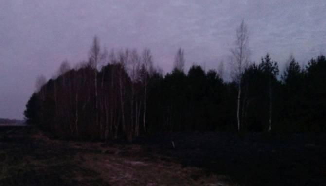 В Почепском районе тушили лесной пожар на площади 5 гектаров