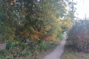 Брянцы заметили жуткую заброшку в Фокинском районе