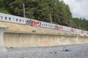 РЖД возвращает поезда из Брянска в Сочи и Анапу