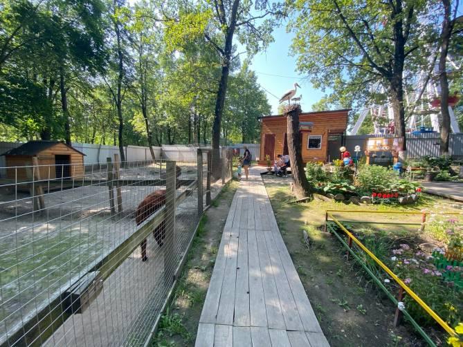Брянский зоопарк на Кургане Бессмертия возобновил работу