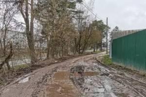Брянцев возмутило бездорожье в поселке Мичуринский