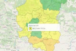 В Брянской области из-за грозы объявили желтый уровень опасности